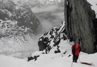 Fiordland-thumb-200x140