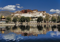 Lhasa-thumb-200x140