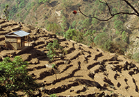Annapurna_010 200x140