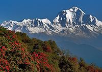 Annapurna_201 200x140