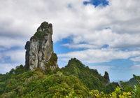 Rarotonga (Buy)