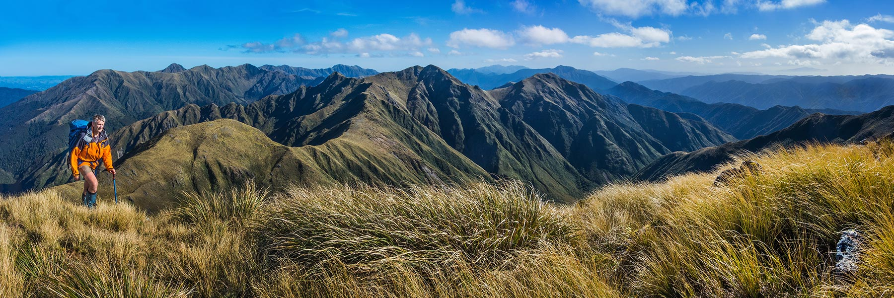 Wide views - North Island, New Zealand - Occasional Climber