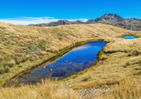 Lewis Pass New Zealand mountain images and information